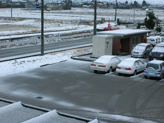 久方ぶりの雪です。