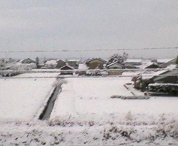 初降雪のあった朝