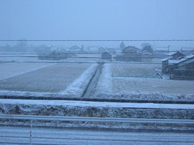 初雪です。やはり降ってまいりました。。。。