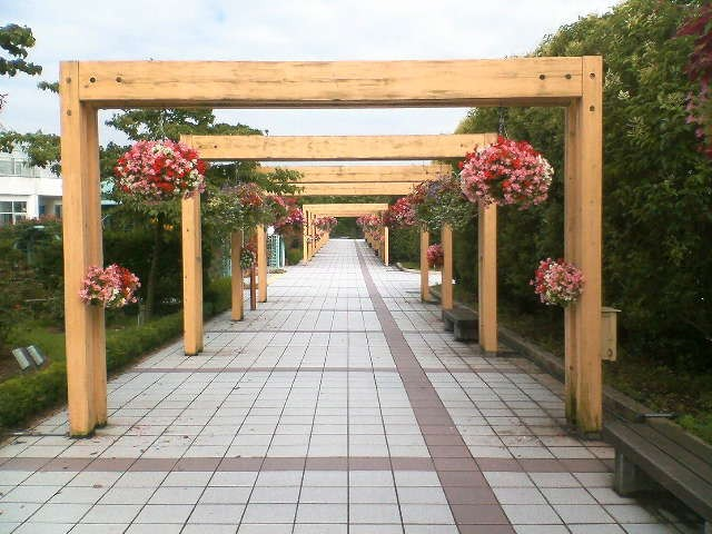 お気に入りの公園内の回廊です。