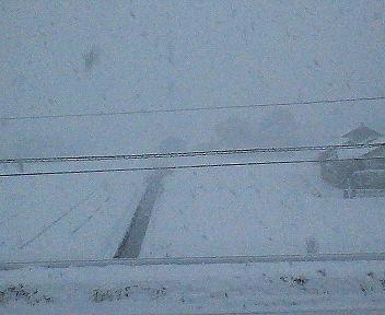 今年の〆は猛吹雪・・・。