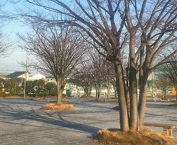 冬木立_1