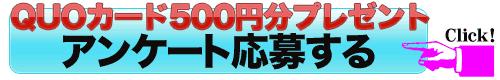 QUOカード500円分プレゼント|アンケート懸賞申し込み