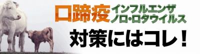 口蹄疫・ノロ・ロタ・インフルエンザウイルス予防対策