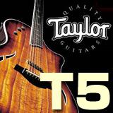taylor_t5.jpg