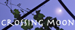 crossingmoon-bn1.jpg
