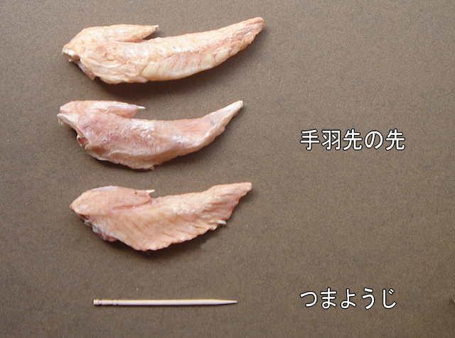 tumayouji.jpg