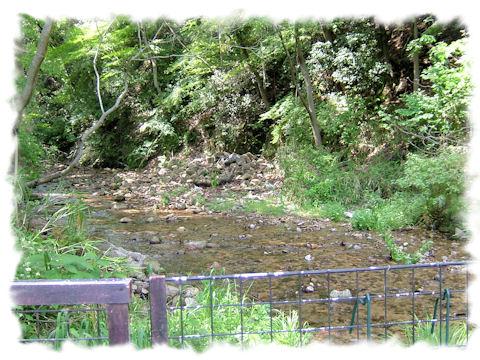 霊園の側の川