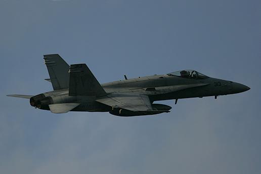 "VFA-192""World Famous Golden Dragons"""