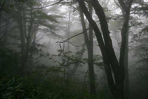 20071008-4.jpg