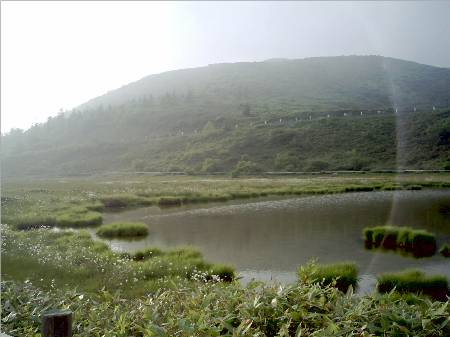 草津白根山湿原.JPG