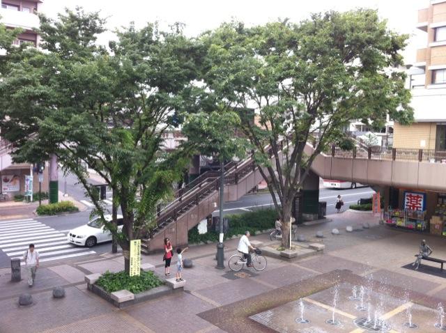 Takamiya tree lined