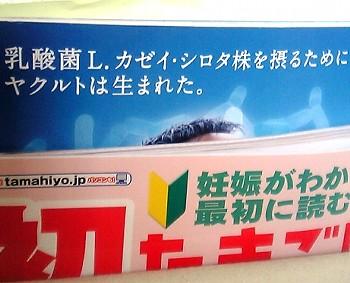 V6010046.JPG