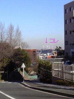 20081227_01.JPG