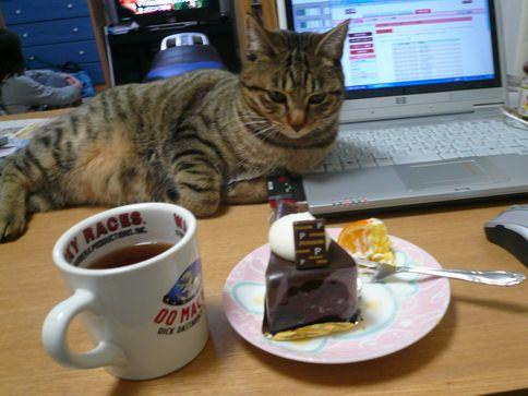 ケーキとみかん01