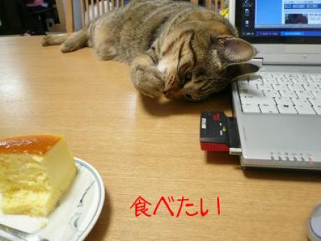 食べたい.jpg