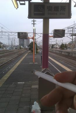 えびさんぽ_1 004.jpg