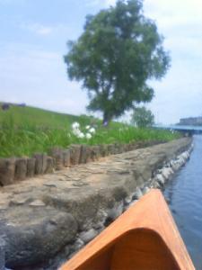 Tide Wood カヌー工房 越谷2