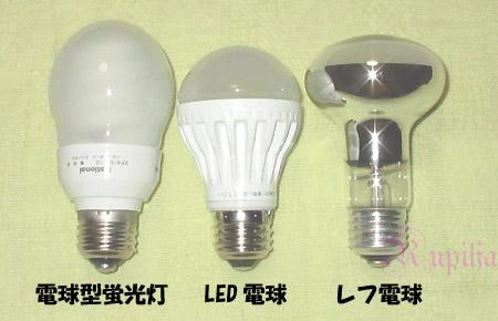 レフ 電球