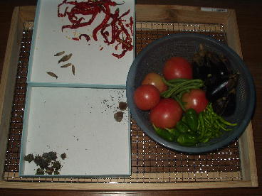 夏野菜10.25