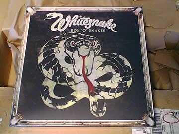 BOX 'O' SNAKES / WHITESNAKE