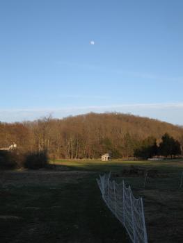 Farm and moon