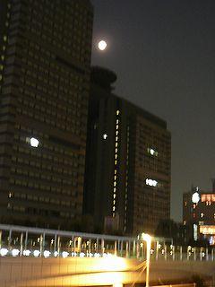 ビル群のお月見.jpg