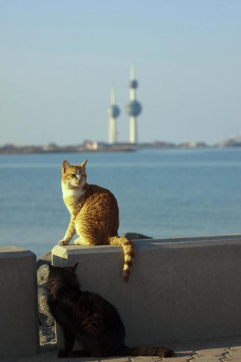 +0426 Kuwait Towers.jpg