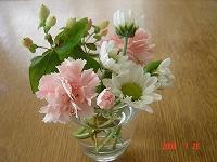 癒されるお花