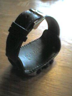 Wrist PDA Band 2