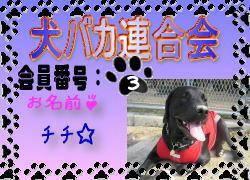 犬バカ連合会.bmp.jpg
