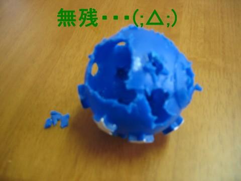 画像 702 Web 表示用 (中).jpg
