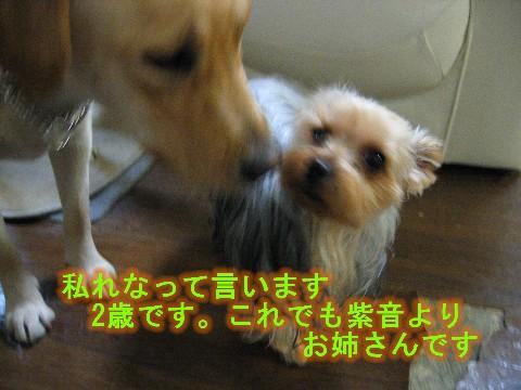 画像 623 Web 表示用 (中).jpg