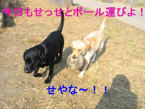 画像 712 Web 表示用 (中).jpg