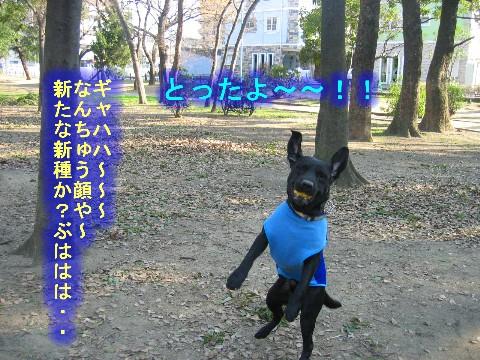 画像 351 Web 表示用 (中).jpg