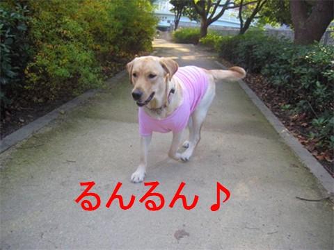 2006-12-221.jpg