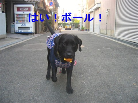 2006-12-2210.jpg