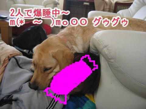 枕 Web 表示用 (中).jpg