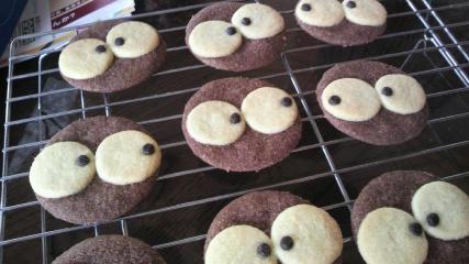 くろ すけ クッキー まっくろ