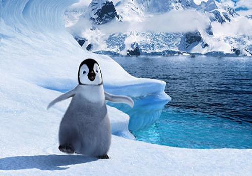 涼しそうなペンギン