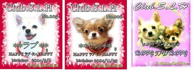 club  S.L.H