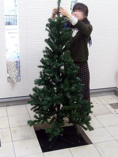 クリスマスツリー_1(07.12.24).jpg