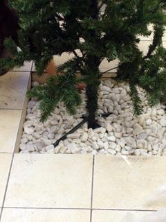 クリスマスツリー_2(07.12.24).jpg