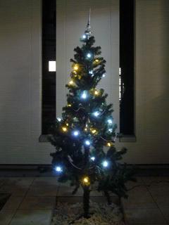 クリスマスツリー_5(07.12.24).jpg