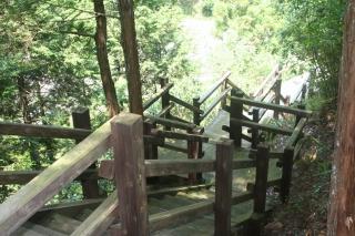 木製遊歩道