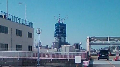 タワー遠景.jpg