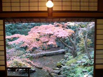 廣誠院の庭2