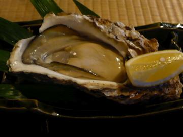 卯庵・五島の岩牡蠣