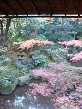 廣誠院の庭1