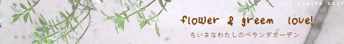 flower&green love!
